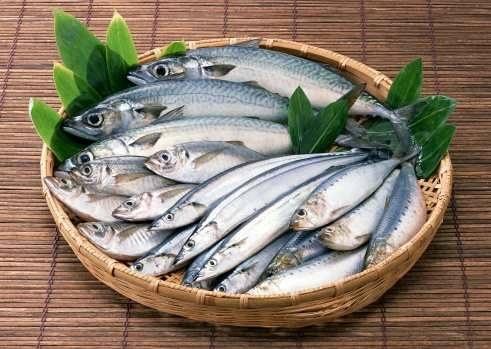 Sagra del pesce azzurro a Donnalucata